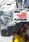 Real Economy Insight 2017: Platinum