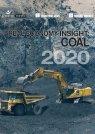 Real Economy Insight 2020: Coal