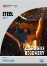 Steel 2021: A fragile recovery