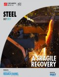 Image of Steel Report Cover