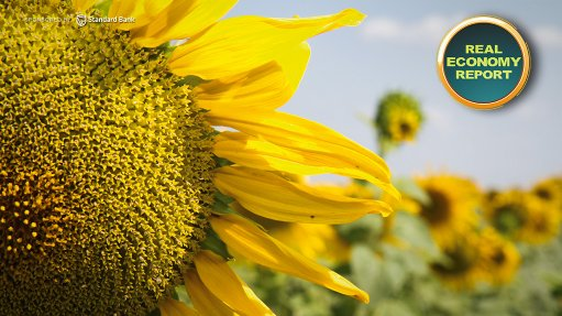 Unilever South Africa's sustainable sunflower farming initiative in Limpopo