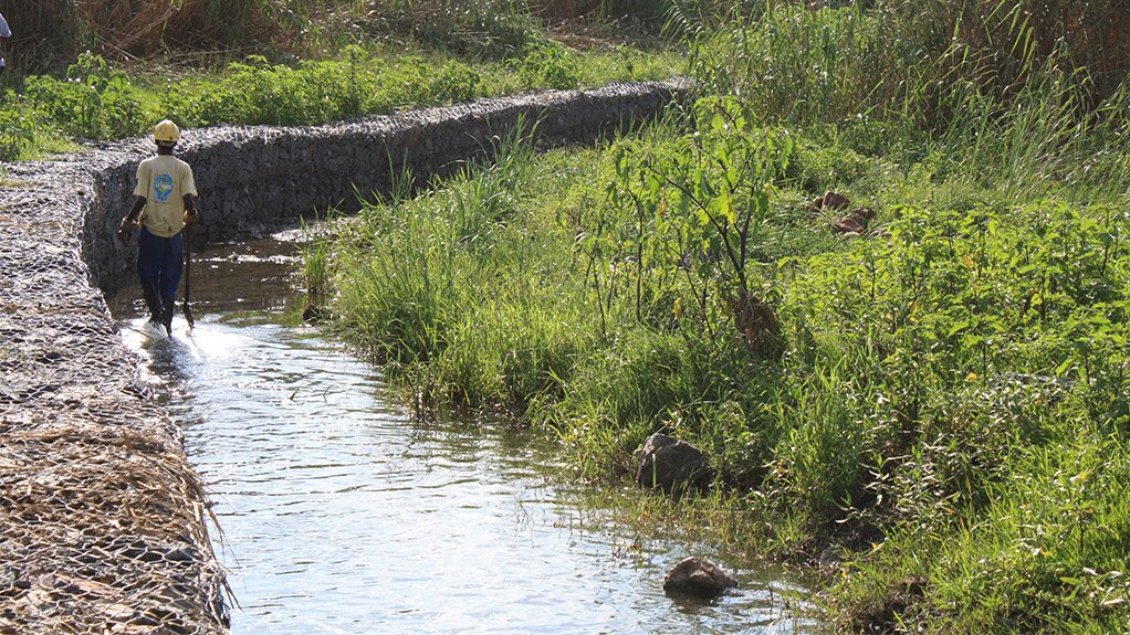 OF PARAMOUNT IMPORTANCE Wetlands support a range of specialised plant, insect, bird and mammal life, while providing wild food, grazing and building and craft materials for people