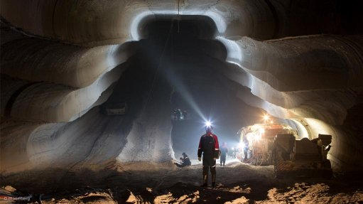 Potash requires moderate approach to pricing – analyst