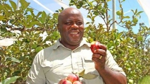 Small-scale local farm develops relationship with Nigerian food market