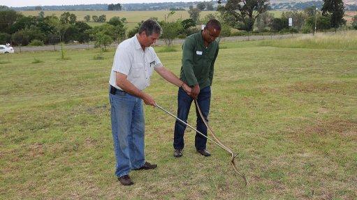 Snake handling for miners