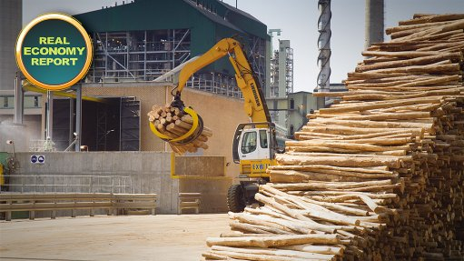 Sappi producing specialised cellulose to secure future growth, profitability
