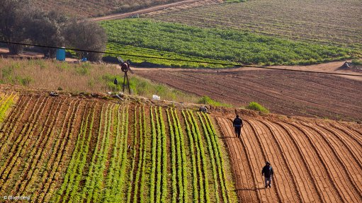 WEF initiative assisting African farmers along  infrastructure corridors