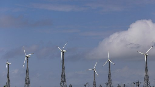 Wind energy projects help restore ecosystem