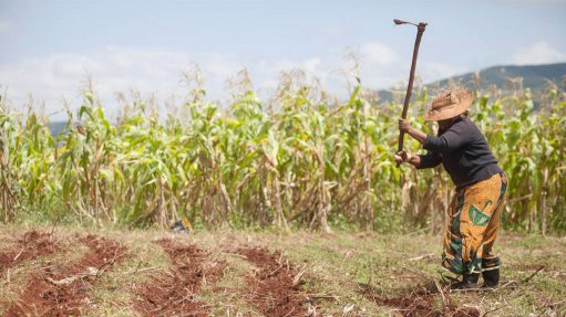 Sustainable farming practices non-negotiable when facing environmental challenges