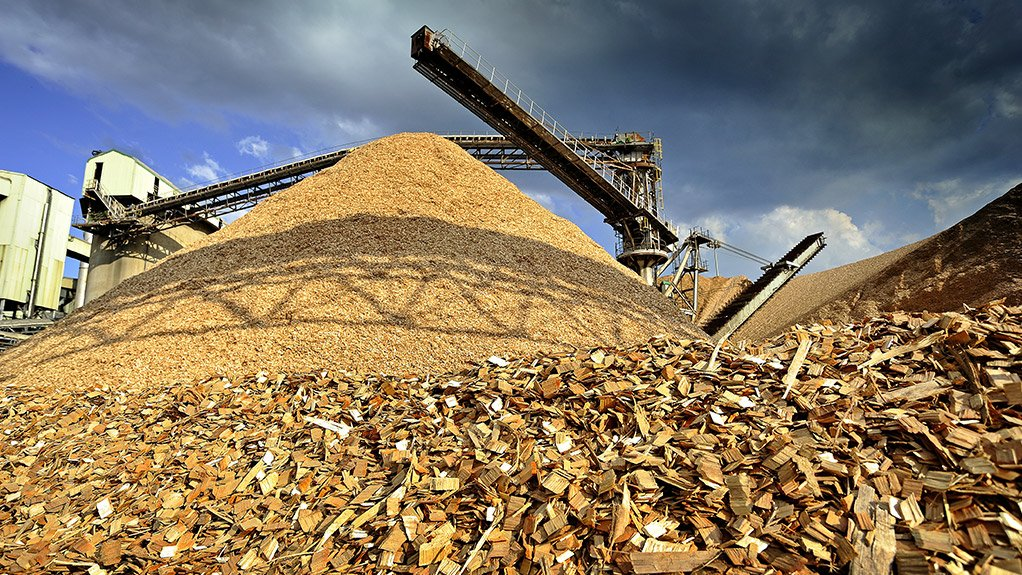 GROWTH PROJECTION The paper industry's energy-saving initiatives are paying off amidst South Africa's stagnant economy