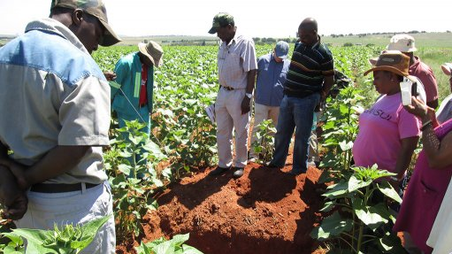 Emerging farmers key  to agri transformation