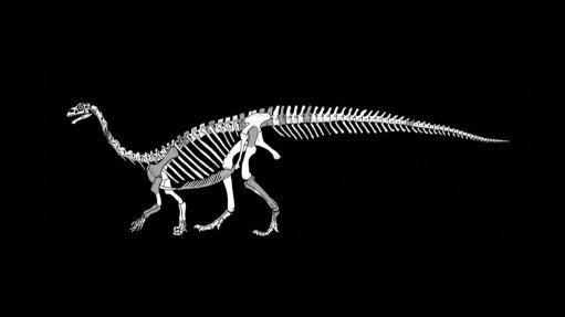 New dinosaur from South Africa gets Sesotho name