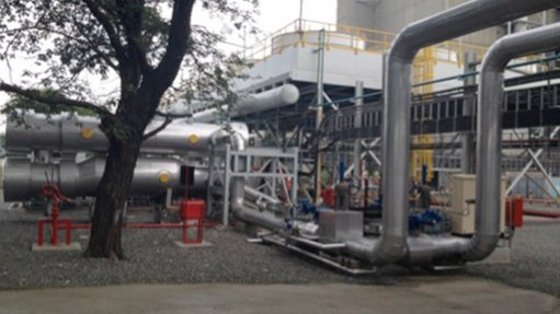 First-of-its-kind cogen plant  fully commissioned