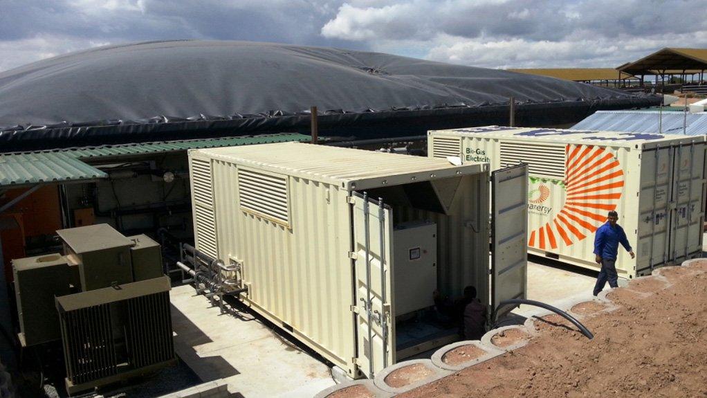 Cape biogas power plant breaches 1.5 GWh milestone, but far more possible