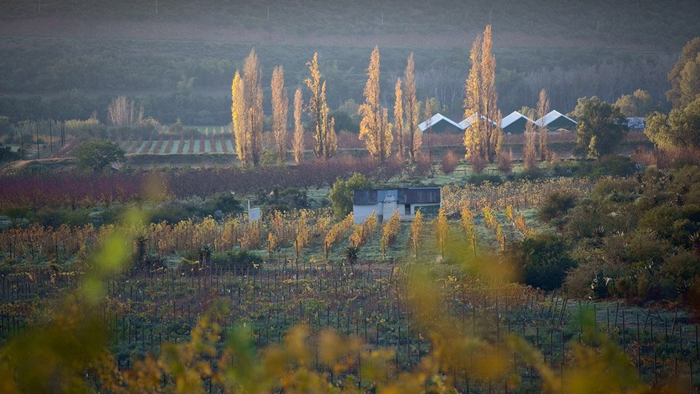 FAMILY AFFAIR Karusa is a family-operated and -managed wine and fruit farm, which has the benefit of there being much greater concern and effort regarding efficiency and productivity