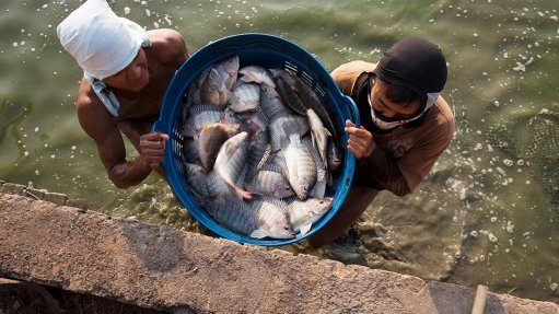 Department approves new fishing regulations