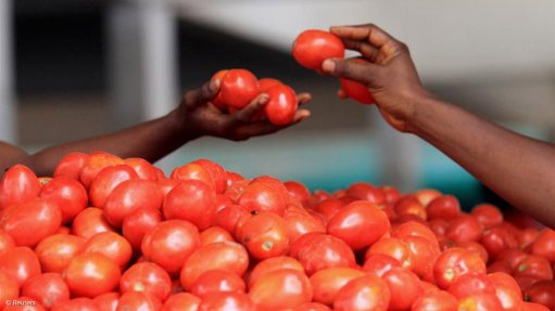 Dürsot Food Corporation opens R100m tomato processing plant
