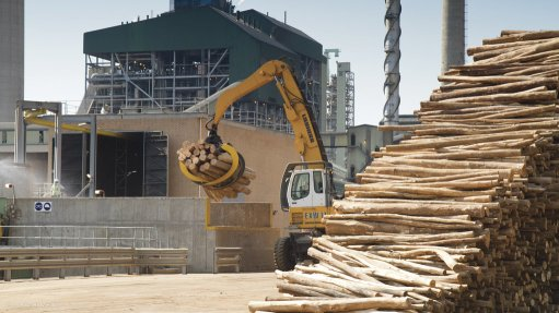 France, South Africa to foster pulp, paper industry relationships
