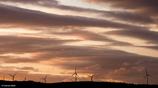 Eskom's IPP stance seen undermining investment and green industrialisation