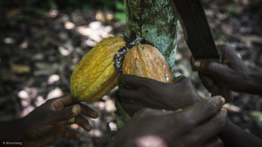 Deal to boost access to  finance for Côte d'Ivoire smallholder farmers