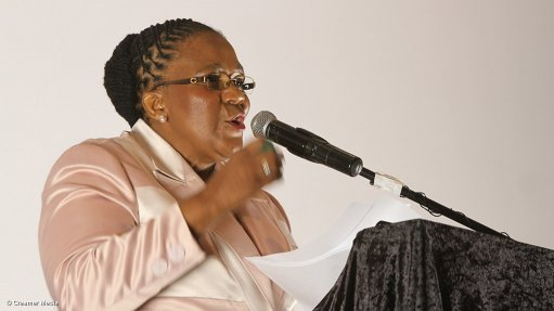 Gauteng govt urges citizens to make greater use of public transport