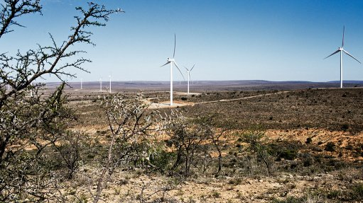 Awareness low of South Africa's 'astounding' renewables success, US survey finds