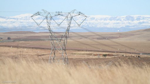 Eskom courts energy-intensive firms as it promises surplus to 2021