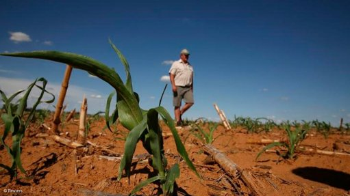 New twist in compensation saga for dispossessed Zimbabwe farmers