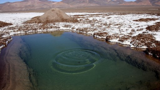 Laguna Verde  surveys yield encouraging results