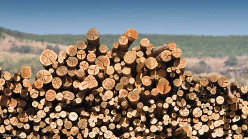 Forestry sector joins forces to mitigate impact of wildfires on plantations