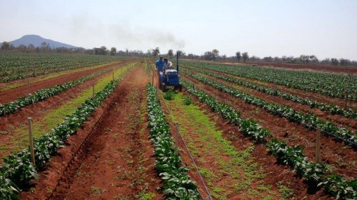 MAXIMUM BENEFIT Hinomoto's small-scale tractors ensure that farmland is used in the most efficient way possible, maximising yield sizes
