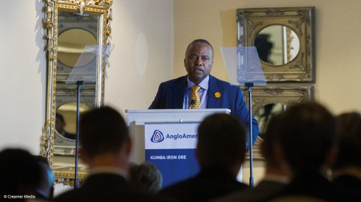 Kumba CEO Mkhwanazi concerned by Minister's reneging