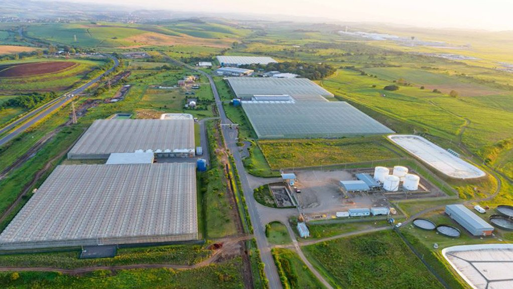 Acquisition to enable large-scale cannabis production