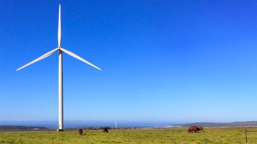 Malmström raises EU's concern over South Africa's stance towards renewables IPPs