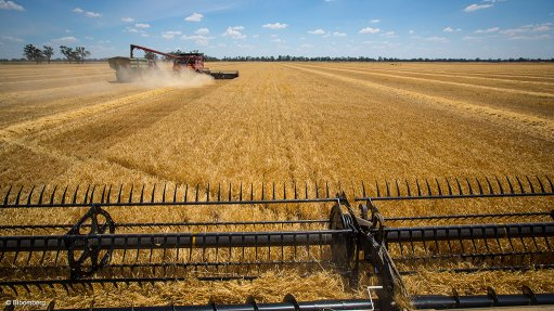Agbiz disappointment by ANC resolution on land expropriation