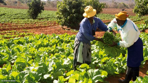 PAC welcomes proposed land expropriation without compensation
