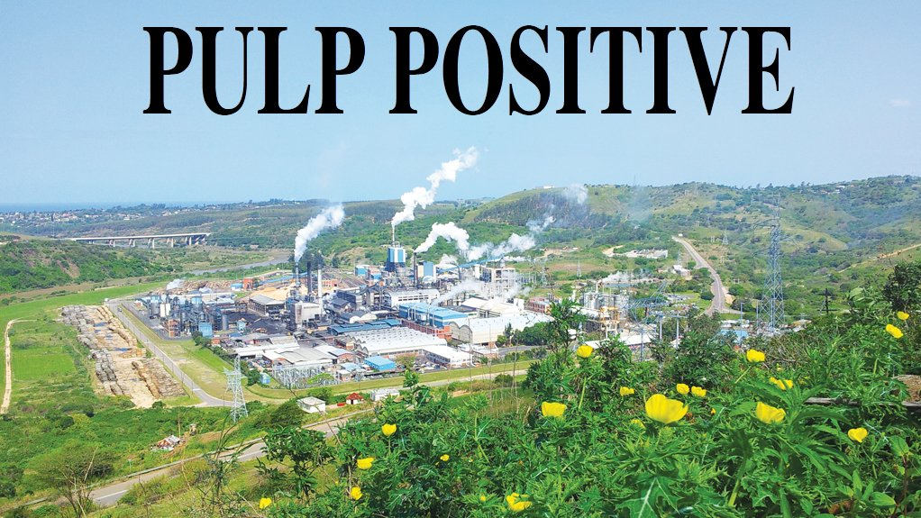 Sappi moves to consolidate dissolving pulp leadership