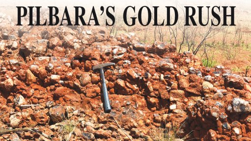 Excitement as 'Wits-style' gold is discovered in iron-ore hub, but geologist urges caution