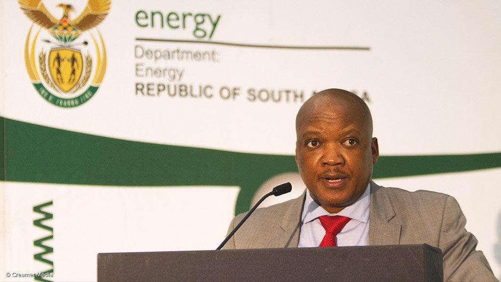 Department of Energy director-general Thabane Zulu