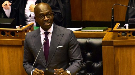 No established policy to privatise SA ports of entry – home affairs minister