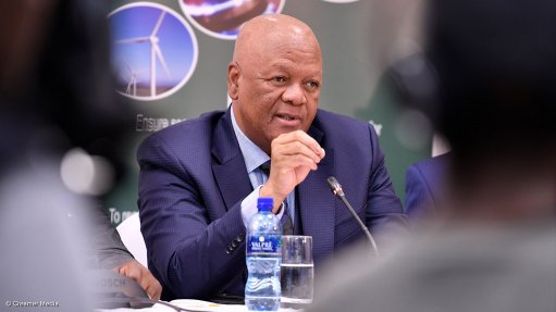 Radebe sees energy contributing $25bn to South Africa's $100bn investment target