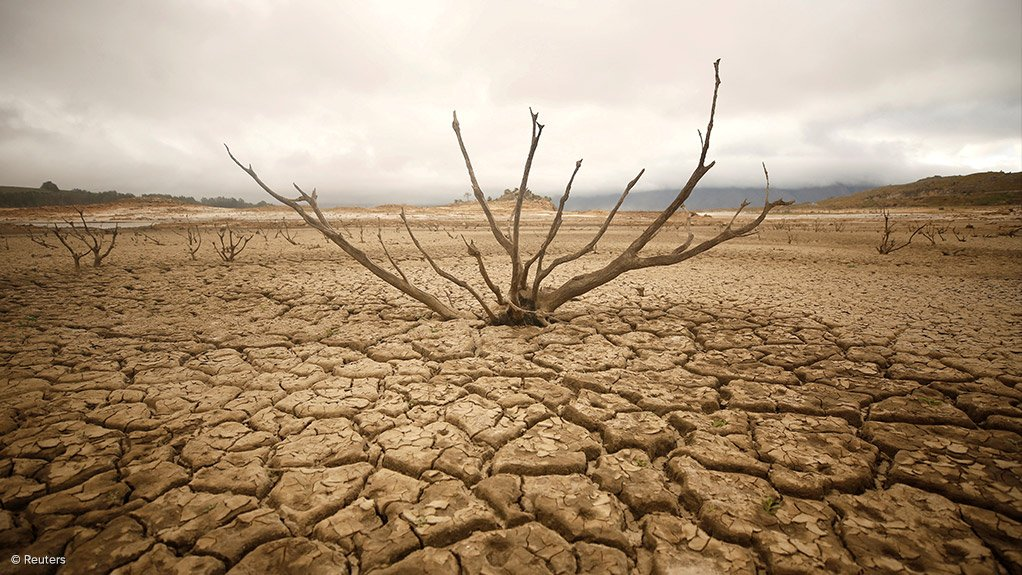 ROAD TO RECOVERY  Drought stricken regions in South Africa need three years of significant rainfall to recover
