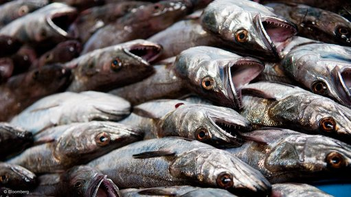 HAKING ITS TOLL Hake takes less toll on the environment than most other farmed proteins