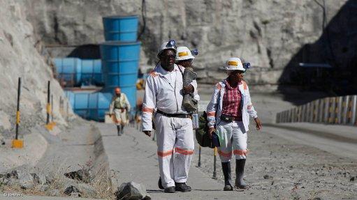 Promising mining opportunities in Zim
