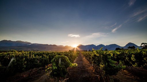 Nederburg, KWV remain among top 50 global most admired wine brands