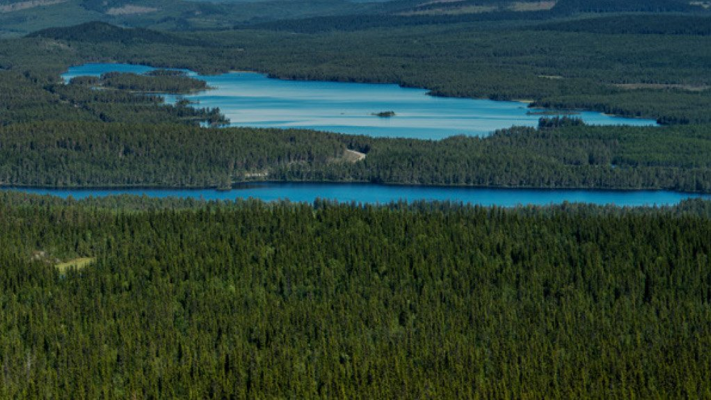 Bioenergy from boreal forests: Swedish approach to sustainable wood use