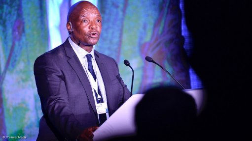 SME sector 'critical' to growing South Africa's economy – Pityana