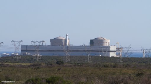 Africa's sole nuclear plant undergoes revamp to extend lifespan