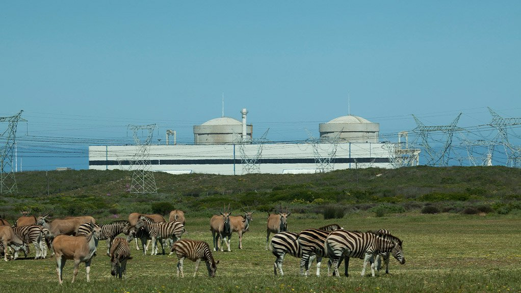 POWER SAFETY Nuclear energy is the cheapest and safest way of producing power out of all the energy sources available in South Africa