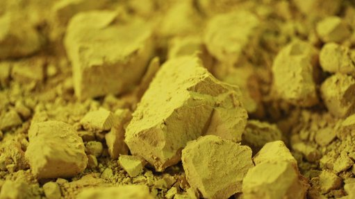 Joint development for Madaouela uranium project